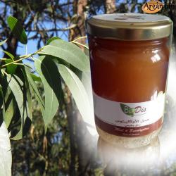 Miel bio d'Eucalyptus - BioDis